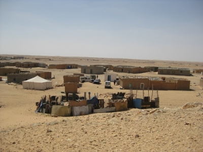 Western Sahara - Genesis of the conflict and the On-going War